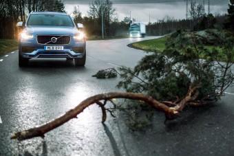 Beszélgetni fognak egymással a Volvo személyautók és teherautók