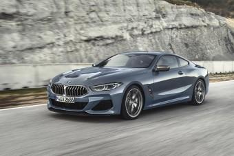 Új csúcsragadozó a BMW-től