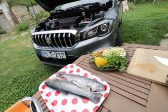 Motortérben főztünk halat, sőt meg is ettük!