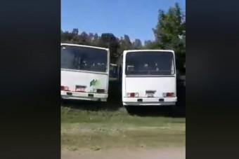 Több mint száz busz rohad Pécs határában