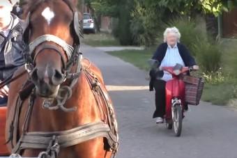 Ahogy Jucika néni körbeautózta a lovaskocsit, arra csak Palik Laci tudott reagálni