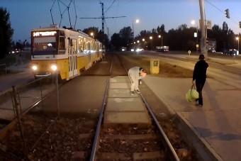 Az év leghülyébb részeg utasát vette videóra a budapesti villamosvezető
