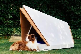Zajszűrős kutyaól a petárdázás ellen