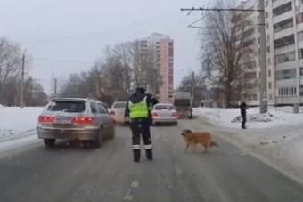 Amit ez a rendőr csinált a bicegő kutyussal, attól könnybe lábad a szemed