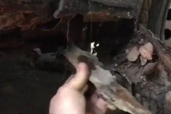 Leleplező videó egy hazai használt autós átverésről