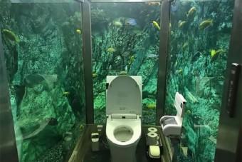 Ezen a WC-n nem nyomkodnád a telefonod