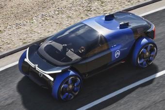 Lelki méregtelenítő a Citroëntől
