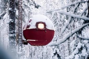 Kis gömböcként ül a fán ez a sátor