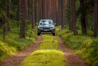 Lettország autóbuzi szemmel