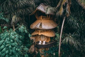 Ma már ezek az esőerdőbe épített bambuszházak menők, nem az ötcsillagos hotelek