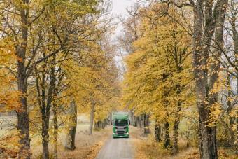 Fát ültetnek, ha buszt vagy teherautót adnak el
