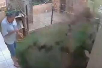 Ez a videó mutatja, miért ne próbálj élősködőket benzinnel irtani