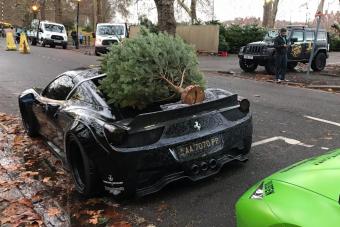 Így viszik haza a karácsonyfát a pofátlanul gazdagok
