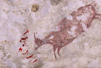 Barlangrajzok bizonyítják, hogy már 44 ezer éve is vadásztunk