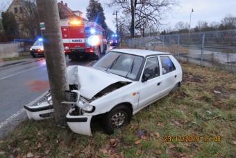 Hal okozott súlyos közúti balesetet