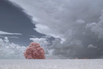Átlagos tájból földöntúli élményt gyárt az infravörös kamera