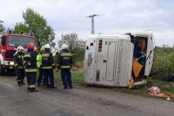 A buszsofőrök okozzák a legtöbb balesetet