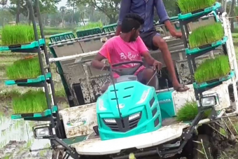 A rizsültető traktor nekünk földöntúli szerkezet, de Ázsiában egyszerű munkagép