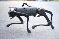 Mostantól bárki megveheti a híres robotkutyát 2