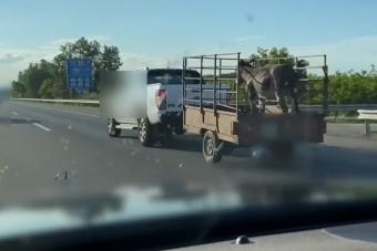 150-nel húzta a szamarat az autós az M5-ösön