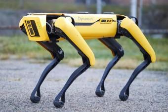 Mostantól bárki megveheti a híres robotkutyát