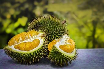 Ezúttal Németországban okozott gondot a világ legbüdösebb gyümölcse