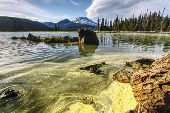 Zöldre festi a hegyi tavakat a klímaváltozás az Egyesült Államokban