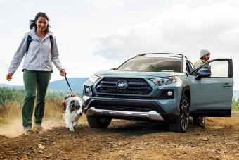 Ilyen autót vegyél, ha szereted a kutyád