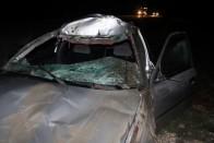 Eszméletlen felvételt készített egy hazai autós: centikre suhant el előtte a szarvas 1