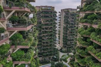 Balul sült el a kínai zöldház-projekt