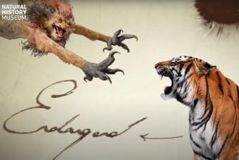 Összecsapnak a valódi és a varázsvilág állatai