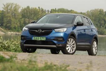 Takarékos, és vaddisznó is lehet ez a hibrid Opel