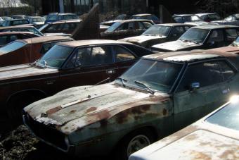 Száz autó rohad egy elhagyott kereskedésben a méteres gazban, és mind eladó