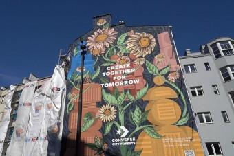 Falfirka tisztítja a városi levegőt