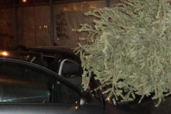 Ha lehet, ne így dobd majd ki a karácsonyfát