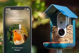 Elképesztő sikert hozott az okos-madáretető