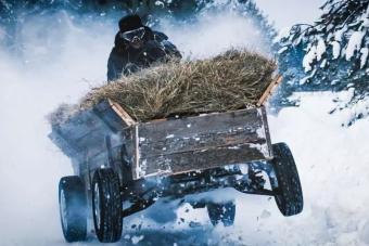 Szalmával megrakott szekér az új orosz driftkirály