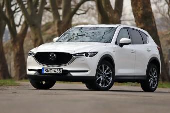 100 év Mazda szabadidő-autói