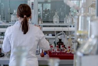 Algákkal tennék jó üzletté a biohidrogén termelését magyar kutatók