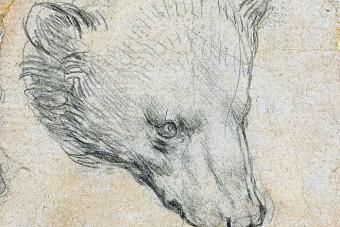 Milliárdokat fizethetnek egy Leonardo-rajzért
