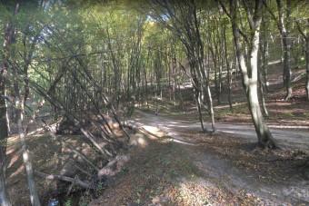 Mostantól fizetős a parkolás egy hazai erdőben