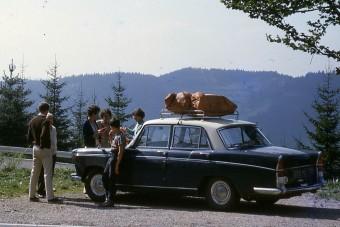 Hasznos holmik autós nyaraláshoz