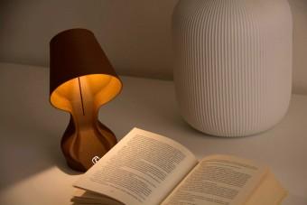 Narancshéjból készült ez az asztali lámpa