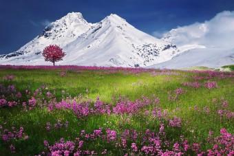 180 gleccsertó jött létre a svájci Alpokban