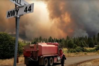 Takaróval védik a lángoktól a világ legnagyobb fáját