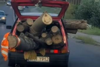 A fél erdőt belepasszírozták egy szerencsétlen Fiatba