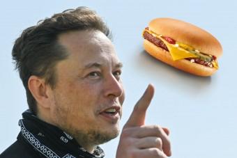 Elon Musk annyit keresett 24 óra alatt, amennyiből 27,5 milliárd darab sajtburgert vehetne